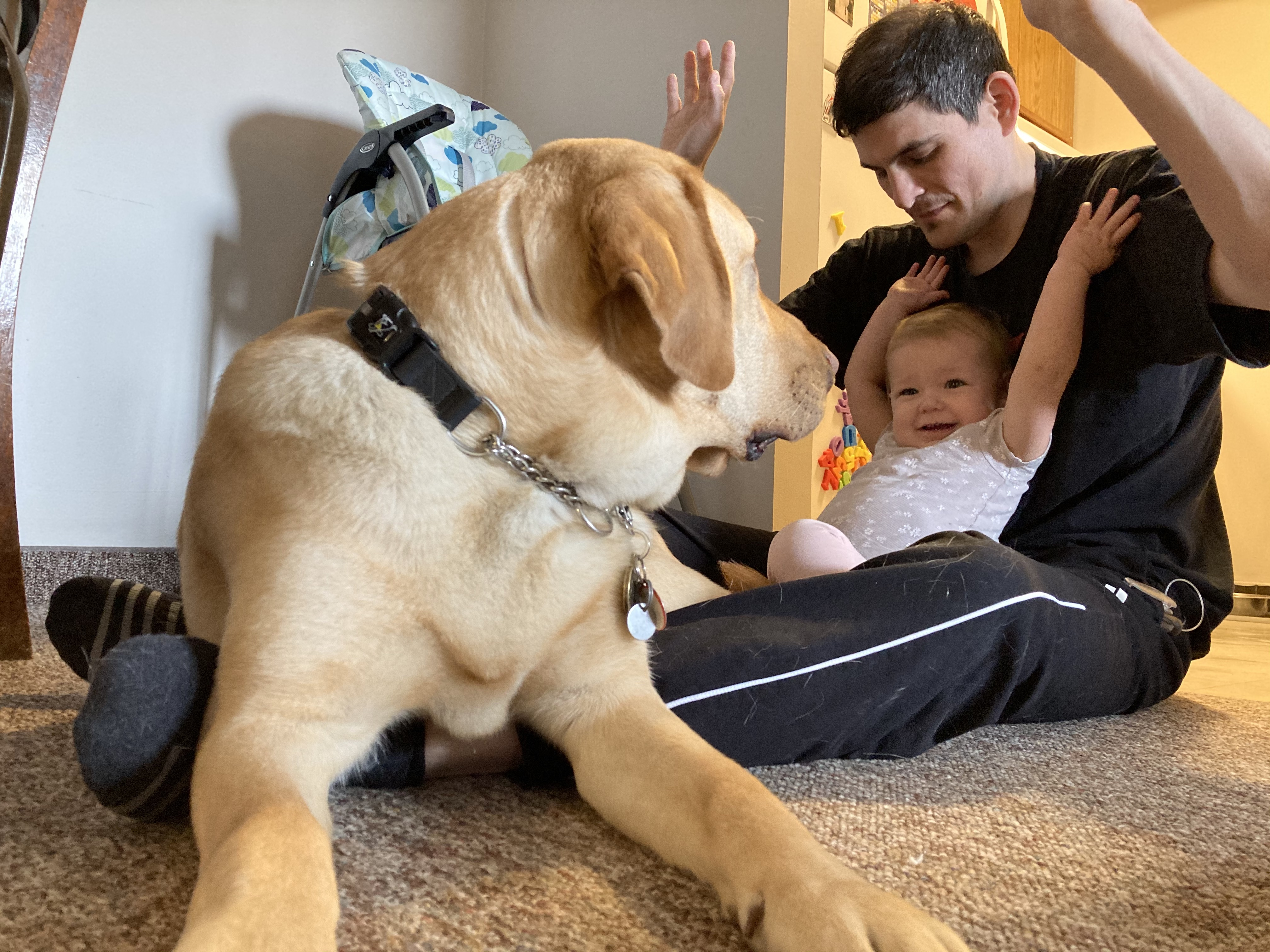 Ryan and his daughter Abigail, sitting on the floor playing with Joe, a CNIB Guide Dog.