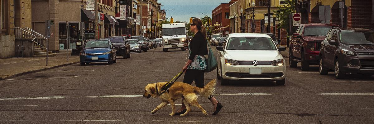 Larissa and her guide dog Piper walking in a crosswalk across a busy street.