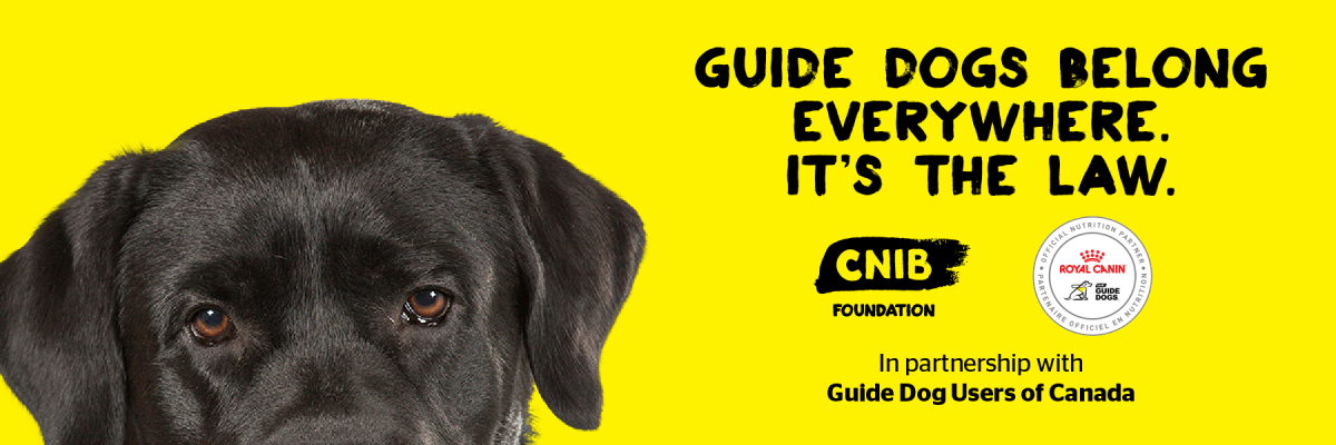 """Guide Dogs Belong Everywhere. It's the Law"" and an image of a black Lab."