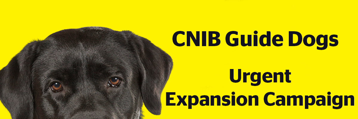 Image of a Black Labrador dog and the words CNIB Guide Dogs Urgent Expansion Campaign