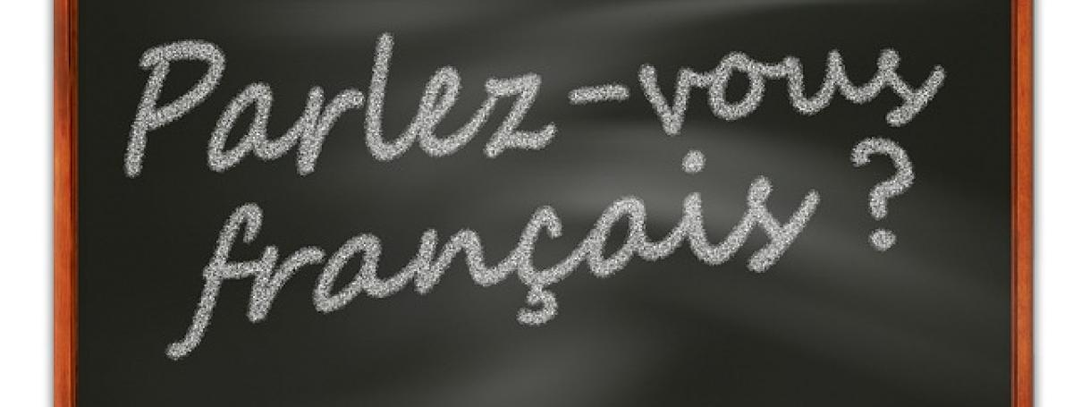 An illustration of a chalkboard. White chalk written on the board: Parlez-vous francais?