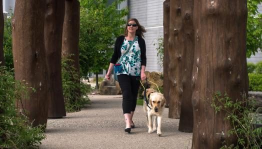 A woman and a yellow guide dog in a harness walking down a park path.