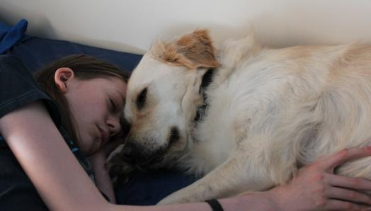 A teenage boy lays with his Buddy Dog, a golden retriever. The boy is embracing the dog and their heads are touching.
