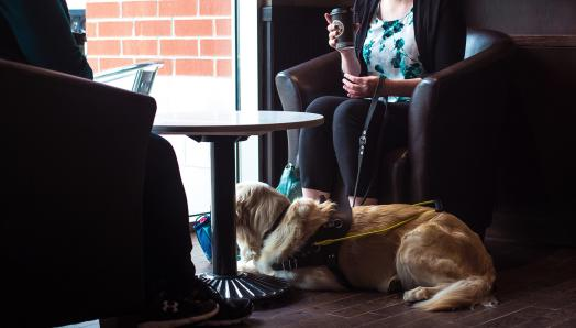 Two people sitting in a café, talking and laughing. A guide dog is laying under the table at their feet.