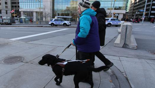 Sandy and her guide dog Keller, walking along a sidewalk in a busy downtown area during a cold day.